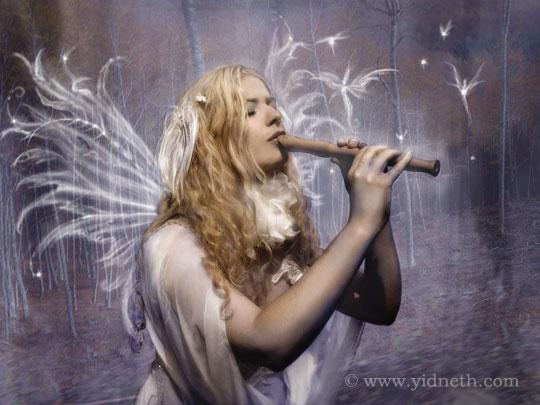 Pris_fairy